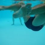 natation adultes .